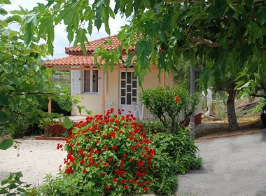 Drosia Beach - Kipseli, Zakynthos,Zante - Beach Bungalows Photo 3