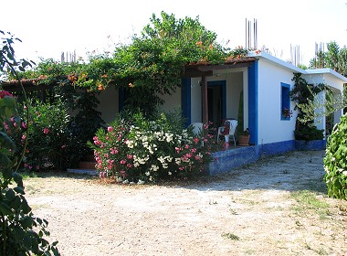 Ag.Sostis, Lithakia, Zante, Zakynthos - Beate Houses & Apartments Photo 1
