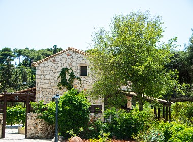 Agios Leontas, Zante, Zakynthos - Boschetto Village Photo 4