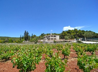 Agios Leon, Zakynthos - Fterini Apartments Photo 13