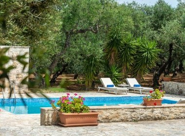 Tsilivi - Olivegrove Villa Photo 12
