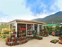 Garden center and Florist shop for Sale